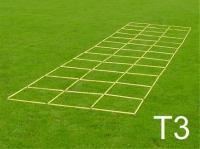 Dreifachleiter (T3)