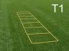 Einfachleiter (T1)